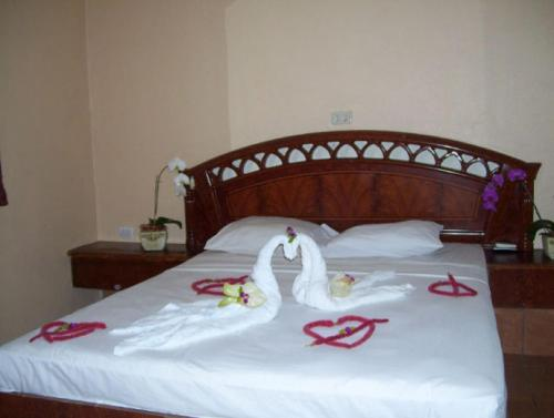 Hotel El Naranjal Photo