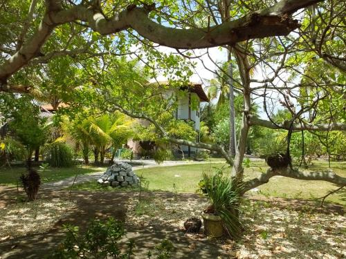 Ecolodge Batel Alagoas Photo