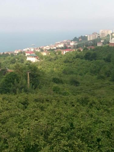Trabzon Trabzon Guest House indirim