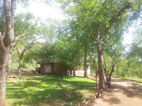 Bush Camp In Private Game Reserve Photo