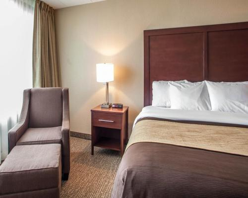 Quality Inn & Suites Orland Park Photo