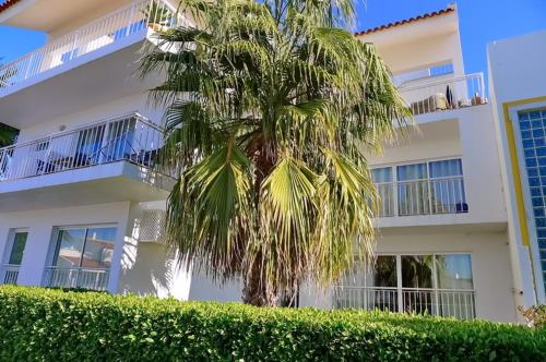holidays algarve vacations Tavira Apartment Cabanas T2 Palmtree
