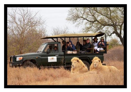 Elandela Private Game Reserve and Luxury Lodge Photo