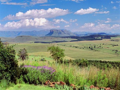 Antbear Drakensberg Lodge Photo