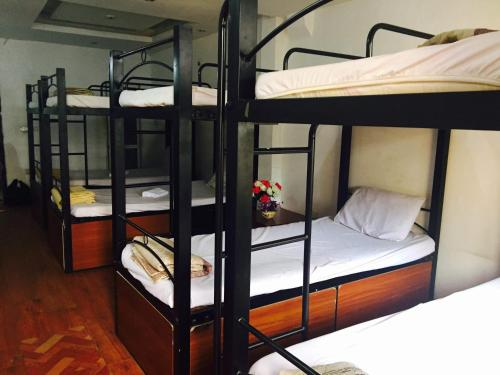 Homebackpackers Hostel photo 6