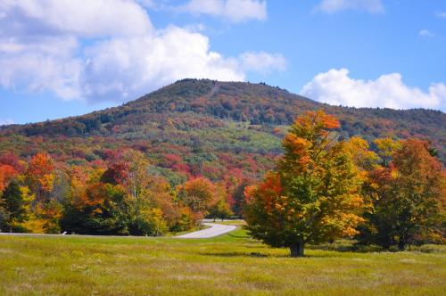 Canaan Valley Resort State Park Photo