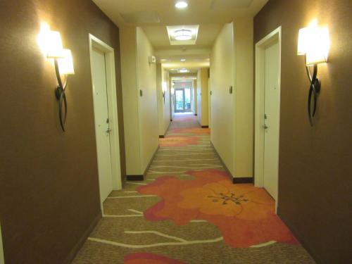 Hilton Garden Inn Memphis/Wolfchase Galleria Photo