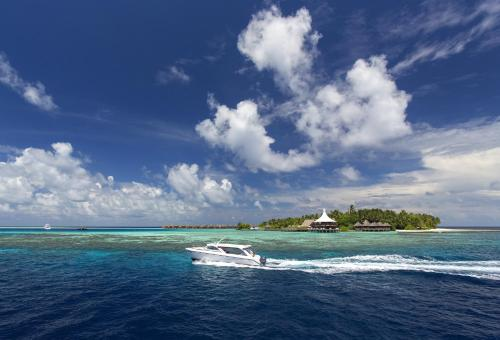 Baros, Maldives, Maldives, picture 62