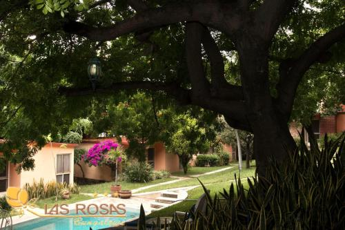 Hotel Bungalows Las Rosas Photo