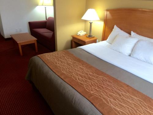 Comfort Inn & Suites Chesapeake Photo