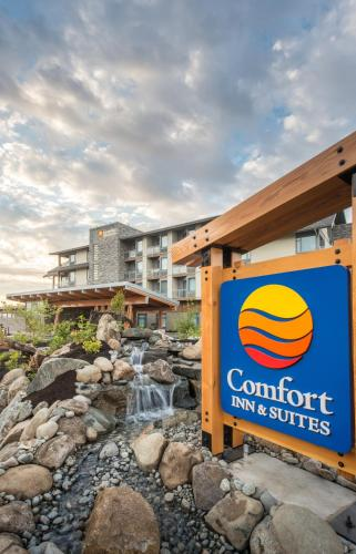 Comfort Inn & Suites Photo