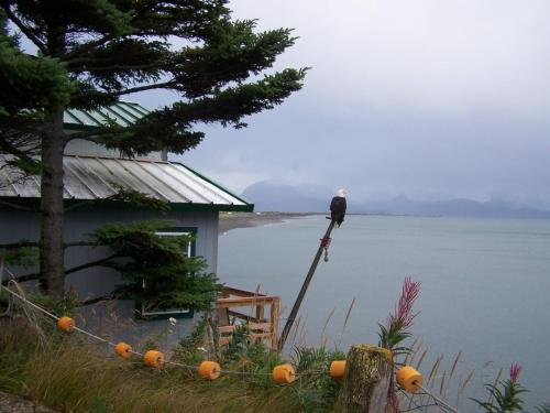 Alaska Beach House Photo