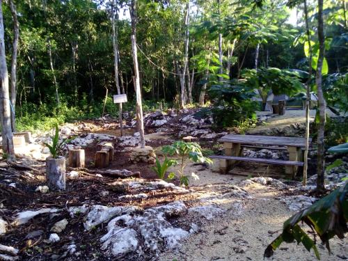 Quintana Roo National Park Campground & Hiking Photo