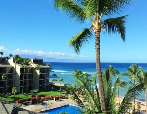The Ka'anapali Shores Suite #605 Photo