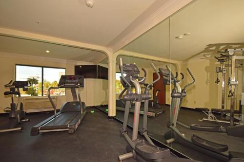 Best Western Plus Suites Hotel photo 19