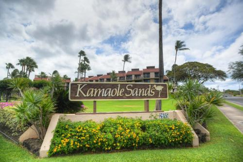 Kamaole Sands 4-208 Photo