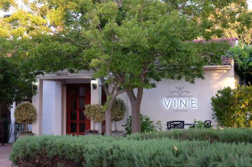 Vine Guesthouse Photo