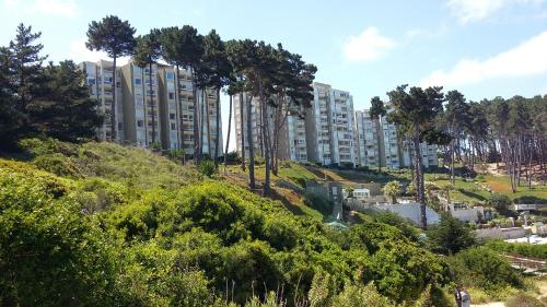 Algarrobo Apartment Photo