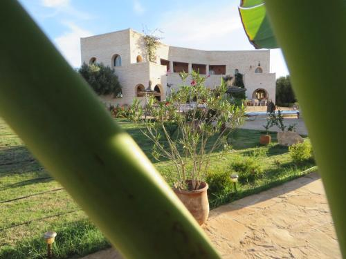 Moulay bouzarqtoune hotels hotel booking in moulay for Les jardins de la villa booking