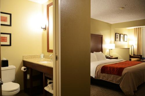 Comfort Inn Idaho Falls Photo