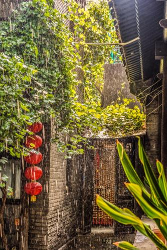 Hill Lily Courtyard photo 25