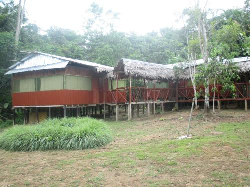 Jungle Explorer Lodge Photo