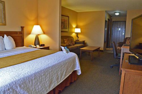 Best Western Plus Country Inn & Suites - Dodge City, KS 67801
