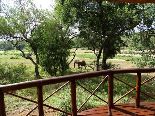 Emhosheni River Lodge Photo