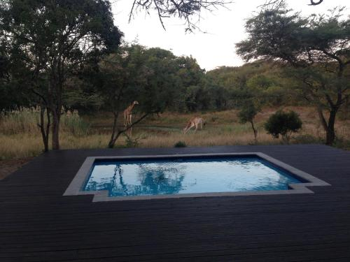 Khangela Private Game Lodge Photo