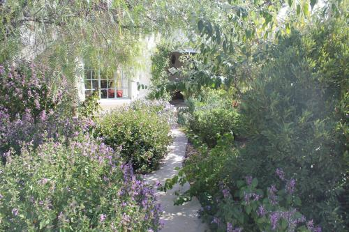 Prince Albert Garden Guesthouse Photo