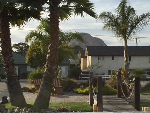 Beach Bungalow Inn and Suites Photo