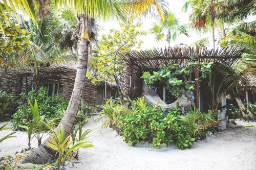 Nomade Tulum Photo