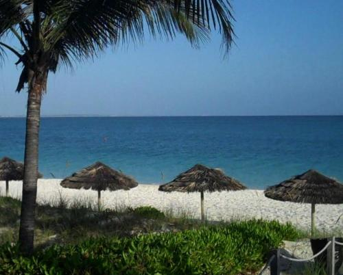 Sibonne Beach Hotel, Turks and Caicos, Turks and Caicos, picture 23