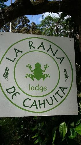 La Rana De Cahuita Photo