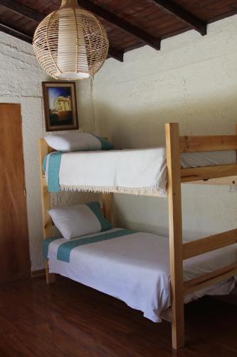 Hostal El Arbol Beach Photo