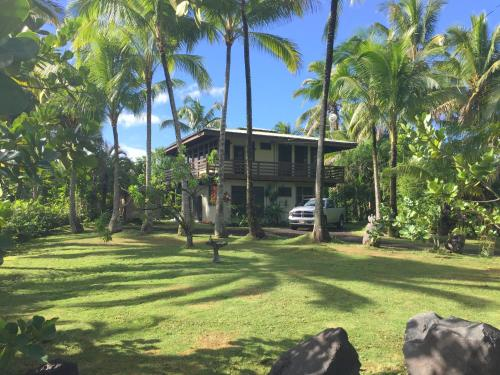 Pualani Tropical Jungle House
