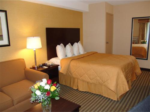 Comfort Inn East Scarborough On Canada Overview