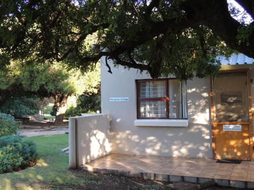 The Green Tree Guest Cottages Photo