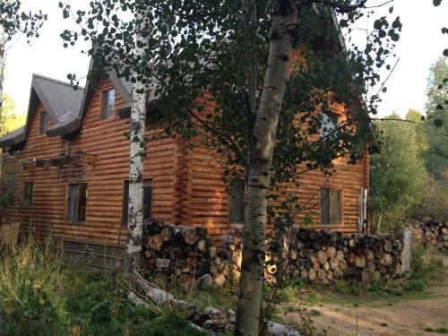 The Aspen Moose Vacation Cabin Photo