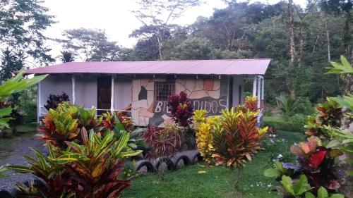 Nacientes Lodge Photo