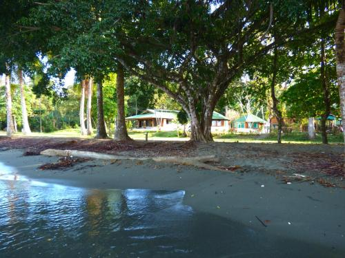 Corcovado Beach Lodge Photo