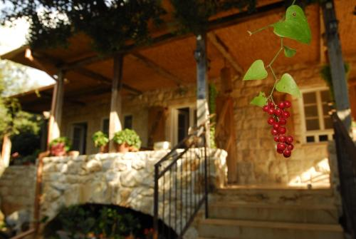 The House In Abirim Photo
