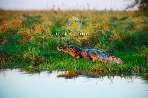 Ibera Lodge Photo