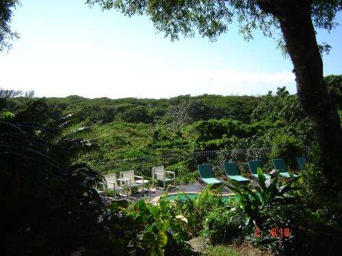 St Lucia Eco-Lodge Photo