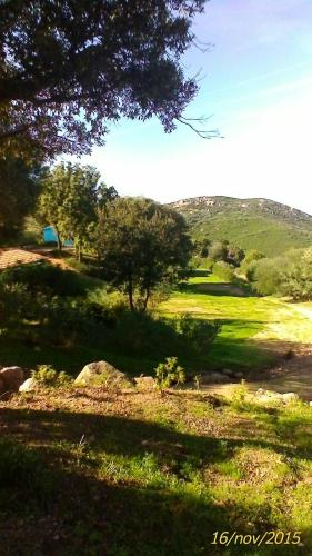 Farm Stay Gli Oleandri