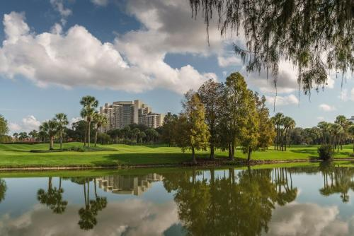 Hyatt Regency Grand Cypress photo 66