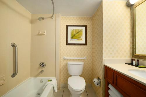 Embassy Suites Orlando - International Drive/Jamaican Court photo 11