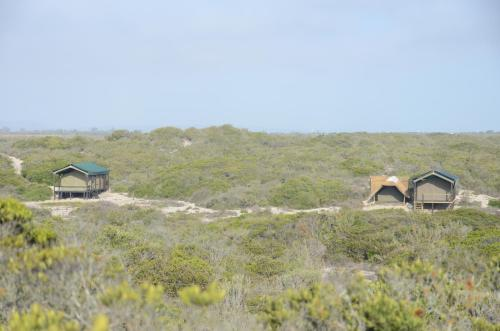 West Coast Luxury Tents Photo