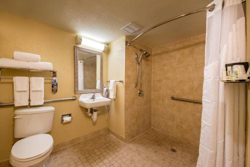 Holiday Inn Orlando SW – Celebration Area photo 39