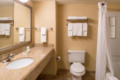 Holiday Inn Orlando SW – Celebration Area photo 35